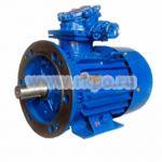 Электродвигатель взрывозащищенный ВАО-51-6 5